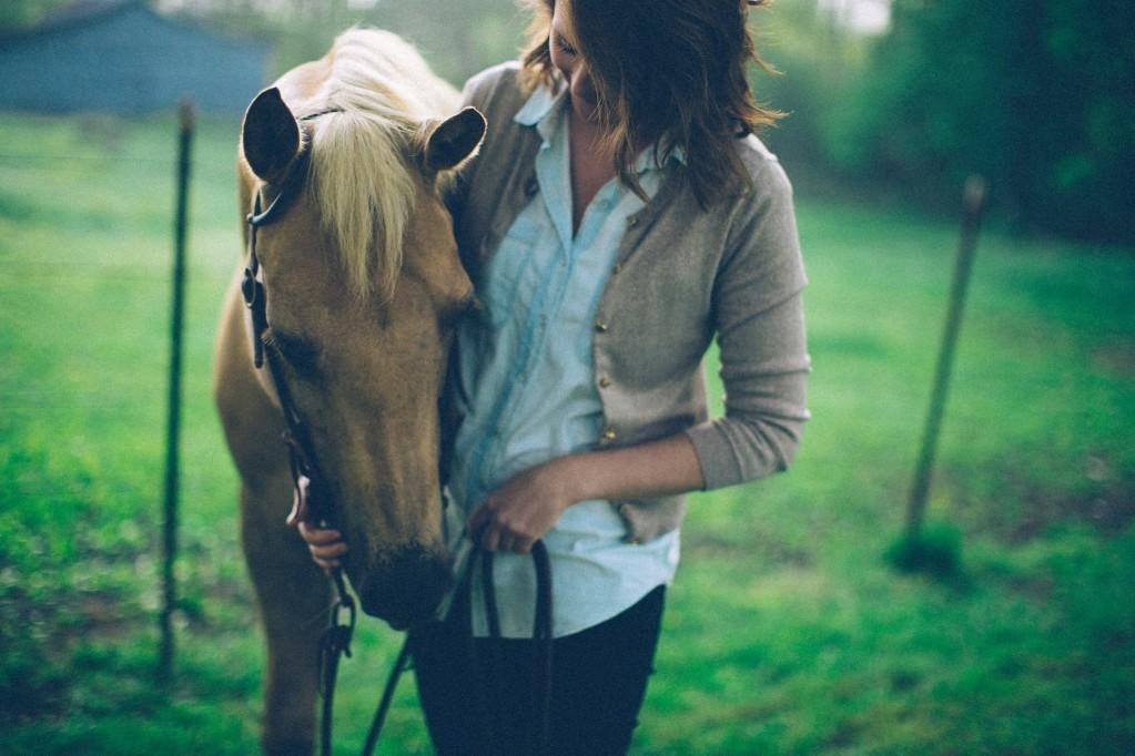prendre soins de votre cheval